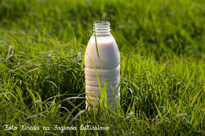 garrafa_leitissimo-no-pasto