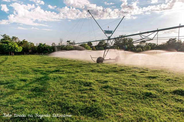 irrigacao-na-fazenda-leitissimo
