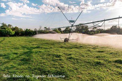 irrigacao-na-fazenda-leitissimo-2